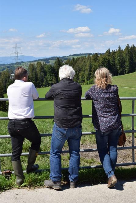 Burkhard's Galloway-Hof in Goldbach im Emmental - Blick ins Land